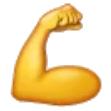 Icon Muskel